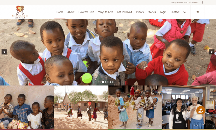 Website Design: For the Love of Africa
